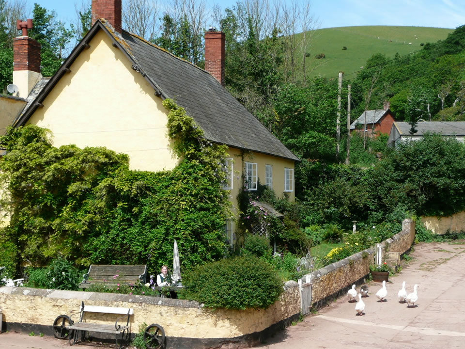 Farm bed and breakfast in Exmoor