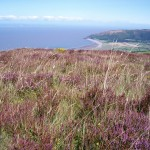 heather moor and sea baxendales
